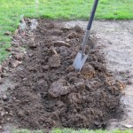 Allotment and Spade (two)